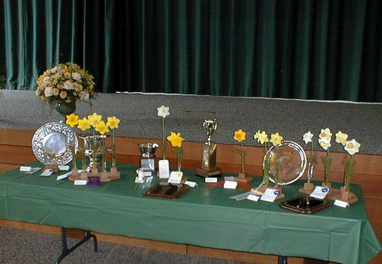 Fortuna Show Awards Table