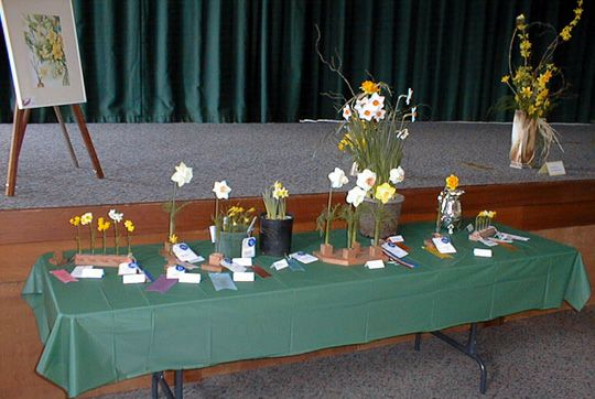 Fortuna's Second Awards Table