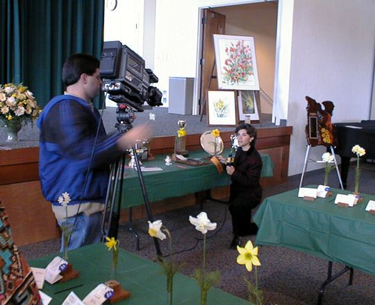 Daffodils on TV!