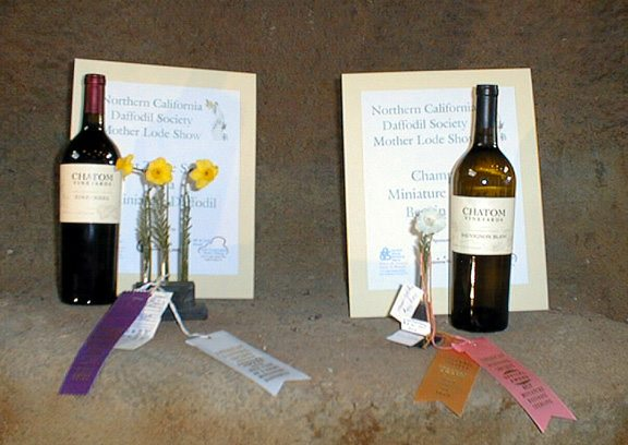 Best Miniatures by Bob Spotts and Nancy Wilson